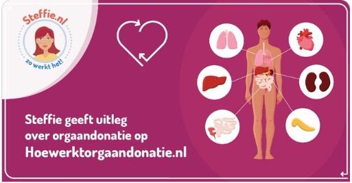 Hoe werkt orgaandonatie? Filmpje in het Arabisch en Nederlands.